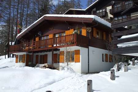 Vacation rental Switzerland – chalet Chalet Augapfel in Bellwald