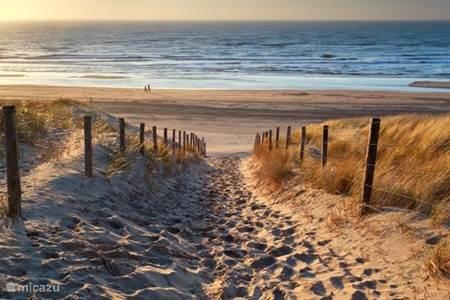 Belgium coast
