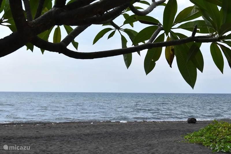 Vakantiehuis Indonesië, Bali, Lovina Villa Strandvilla Ganesha direct aan zee