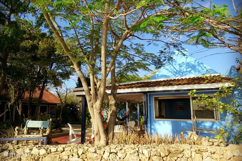 Vacation rental Bonaire, Bonaire, Kralendijk Holiday house Casa Topana