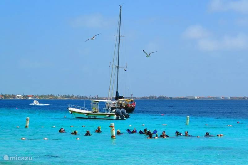 Vakantiehuis Bonaire, Bonaire, Kralendijk Vakantiehuis Casa Topana