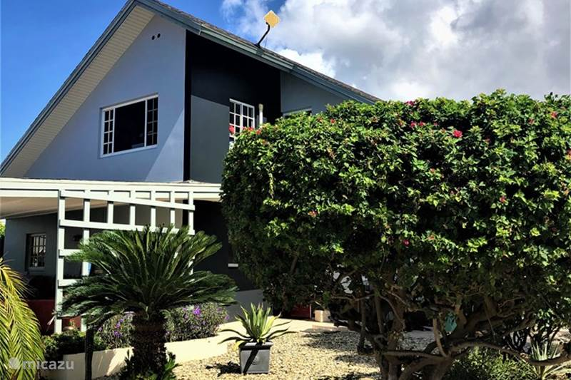 Vacation rental Aruba, Pos Chiquito, Pos Chiquito Apartment Palmhouse apartment 1
