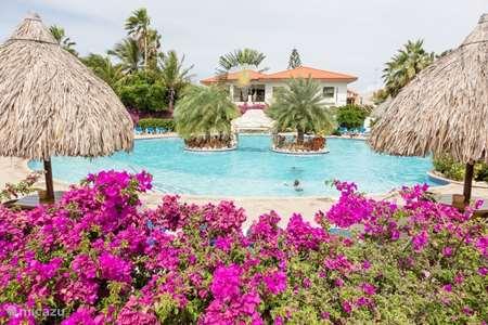 Vakantiehuis Curaçao, Banda Ariba (oost), Seru Coral studio Seru Coral Studio Tiki Bar