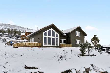 Vacation rental Norway – holiday house Holiday home Vrådal Norway