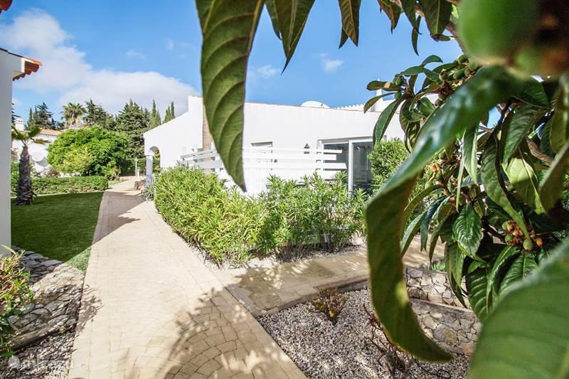 Vakantiehuis Portugal, Algarve, Carvoeiro Appartement Casa Livia