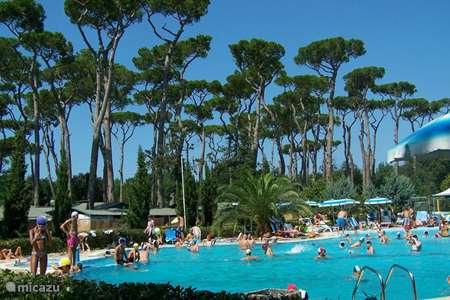 Vakantiehuis Italië, Toscane, Viareggio chalet Chalet 'Lucca' bij zee l Toscane