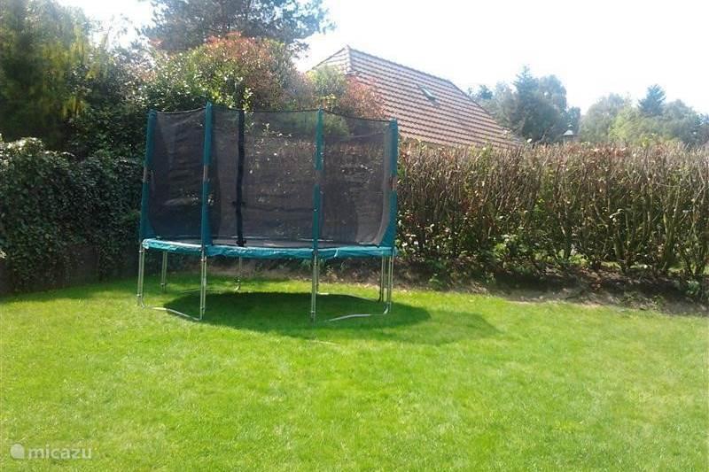 Vakantiehuis Nederland, Gelderland, Lunteren Bungalow Bungalow 49 op de Veluwe
