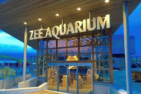 Zeeaquarium