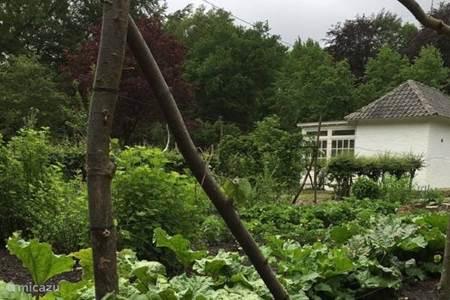 De tuin van landgoed Het Witte Kasteel