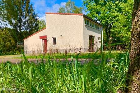 Vakantiehuis Nederland, Gelderland, Halle vakantiehuis Forest Holiday