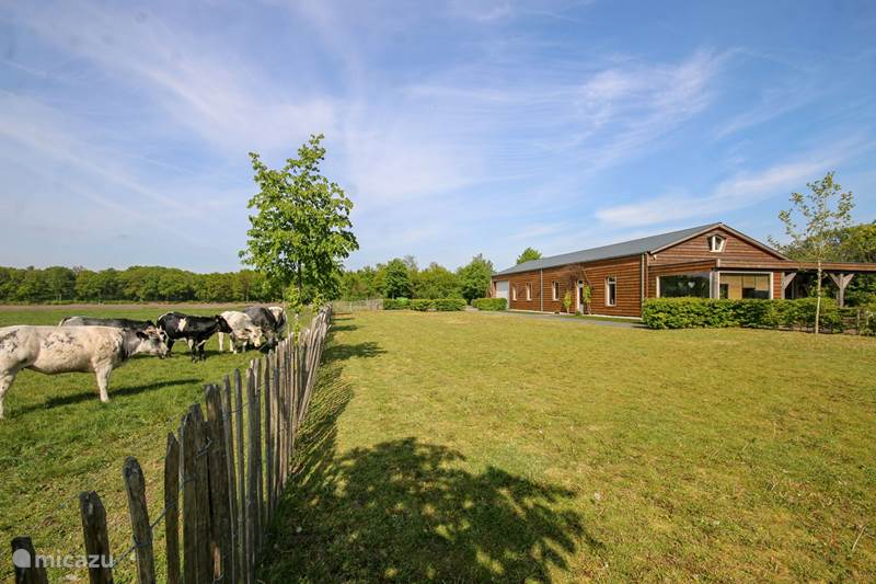 Vakantiehuis Nederland, Noord-Brabant, Oploo Vakantiehuis Gasthoeve De Drie Eiken