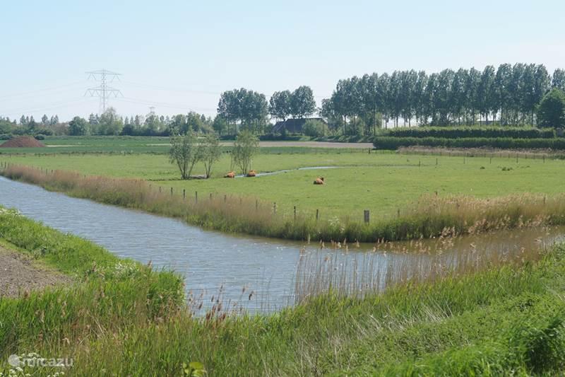 Vakantiehuis Nederland, Zeeland, Ovezande Pension / Guesthouse / Privékamer Vakantiewoning Het Olietunnetje