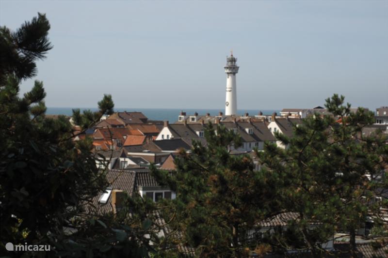 Vakantiehuis Nederland, Noord-Holland, Egmond aan Zee Vakantiehuis Küstenhaus auf der Düne