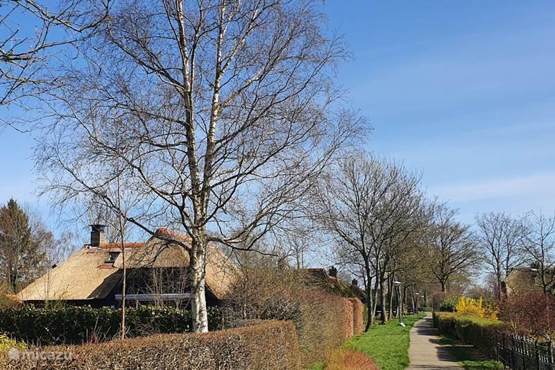 Vakantiehuis Nederland, Overijssel, Giethoorn Vakantiehuis Vakantiehuis Zwarte Stern Giethoorn