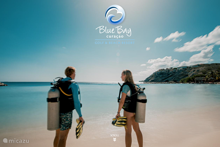 Blue Bay Dive