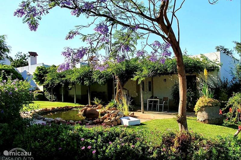 Vakantiehuis Portugal, Algarve, Vale Judeu Appartement Casa do Alto Appartement/B&B no 1