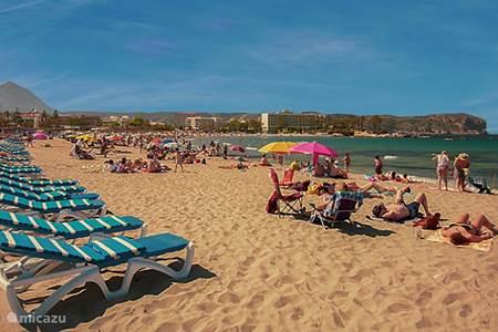Het zandstrand van Playa Arenal