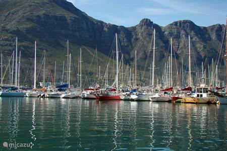 Things to do in Hout Bay en Cape Town