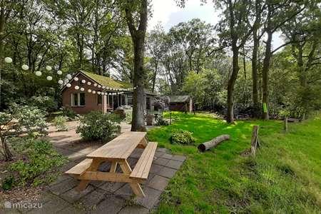 Vakantiehuis Nederland, Drenthe, Doldersum bungalow Doldersamen