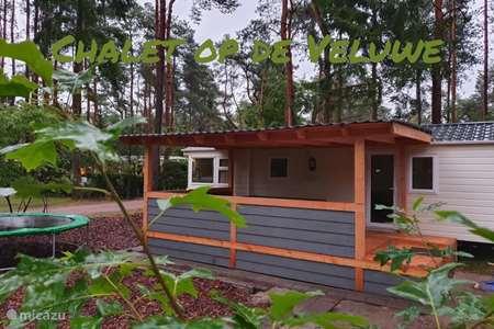 Vakantiehuis Nederland, Gelderland, Doornspijk chalet Chalet op de Veluwe F23(camping)