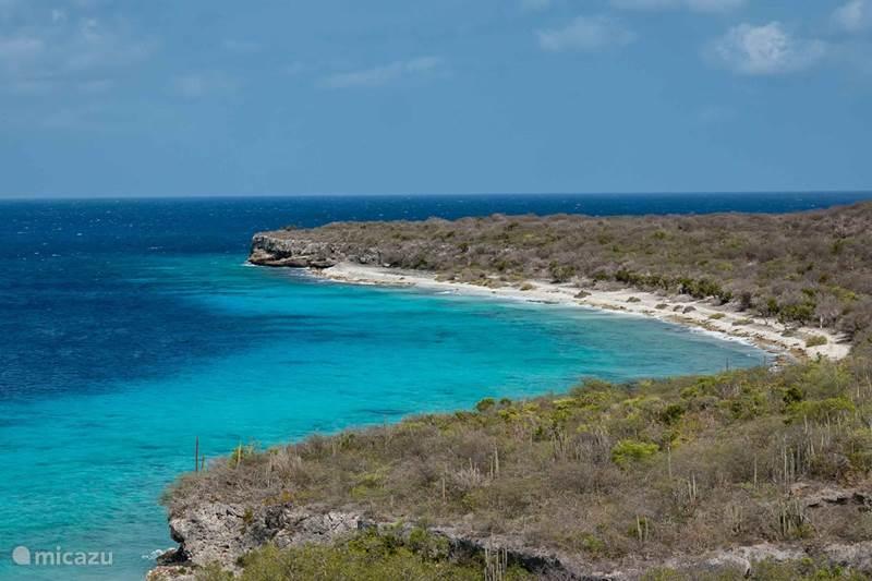 Ferienwohnung Curaçao, Banda Abou (West), Cas Abou Appartement Libelle Wohnung