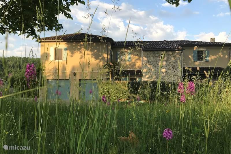 Vakantiehuis Frankrijk, Dordogne, Bergerac Villa Le Vigiers
