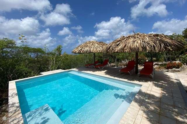 Ferienwohnung Bonaire, Bonaire, Sabadeco - studio Kas Espedajo - studio palmtree