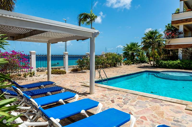 Vacation rental Bonaire, Bonaire, Kralendijk Apartment Lovely spot on the boulevard