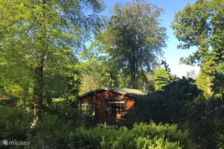 Vakantiehuis Nederland, Overijssel, Holten blokhut / lodge Boshuis Borkeld, houten cabin Holten