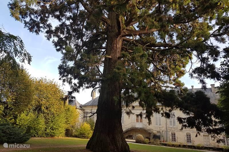 Vakantiehuis Frankrijk, Haute-Marne, Poissons Landhuis / Kasteel Chateau de Riaucourt a Poissons