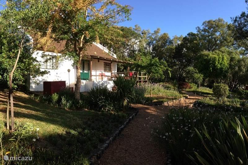 Vakantiehuis Zuid-Afrika, Kaapstad (West-Kaap), Paarl Chalet MooiBly Huis met Rieten Dak