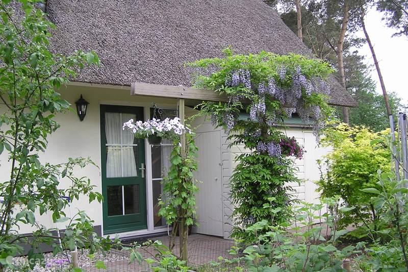 Vakantiehuis Nederland, Overijssel, Heeten Vakantiehuis Bosvilla Elfie