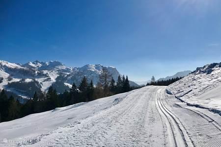Skiing at Nassfeld