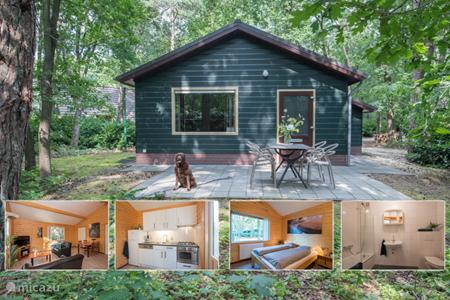 Vakantiehuis Nederland, Noord-Brabant, Heesch bungalow Blauwe Pauw