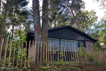 Vacation rental Netherlands, Overijssel, Rheezerveen bungalow Bungalow 11