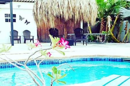 Vacation rental Curaçao – studio Apartment Curaçao- Studio pool side