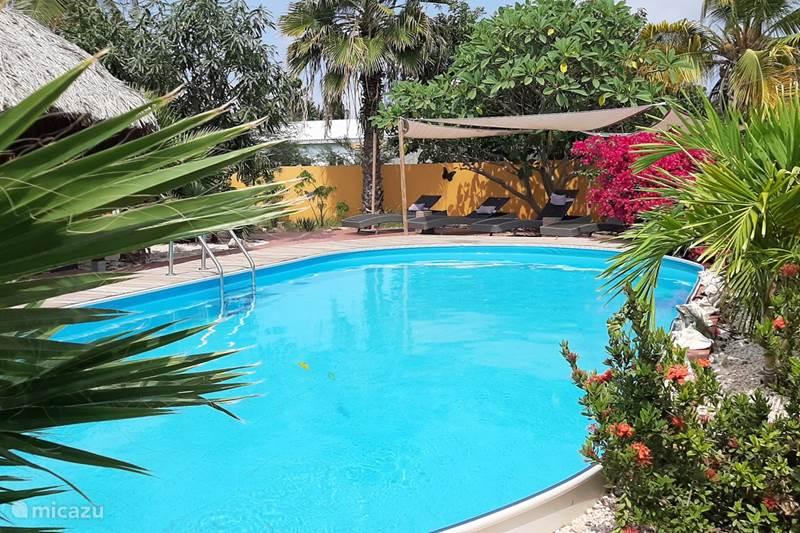 Vakantiehuis Bonaire, Bonaire, Playa Pariba Appartement Casa Trankilo