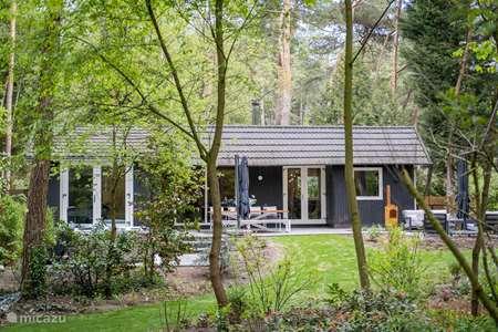 Vakantiehuis Nederland, Noord-Brabant, Baarle-Nassau villa Villa Sayang