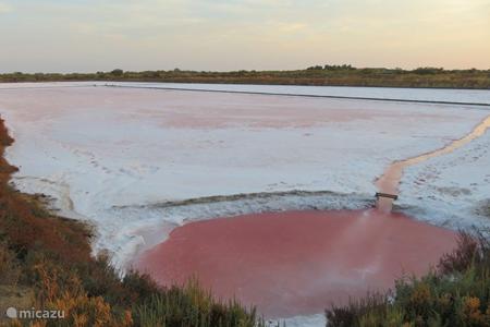 De zoutpannen van Tavira en omstreken