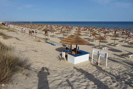 Het strand van Cabanas