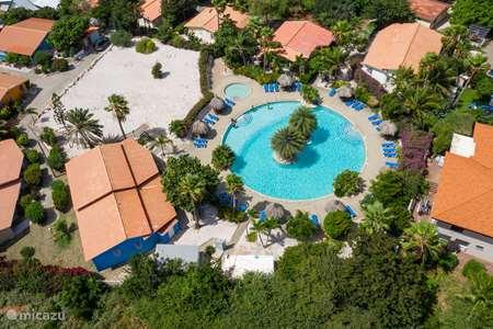 Vakantiehuis Curaçao, Curacao-Midden, Abrahamsz - studio Studio KOLIBRI aan het zwembad