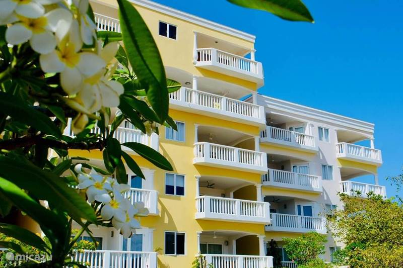 Vacation rental Curaçao, Curacao-Middle, Willemstad Apartment NEW: Blue Bay Oceanview - Apartment