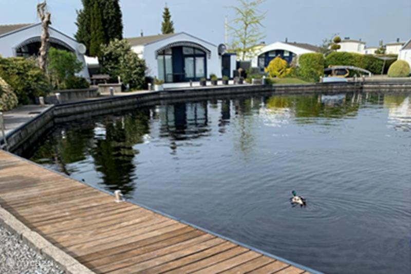 Vakantiehuis Nederland, Friesland, Lemmer Vakantiehuis Aquaronde