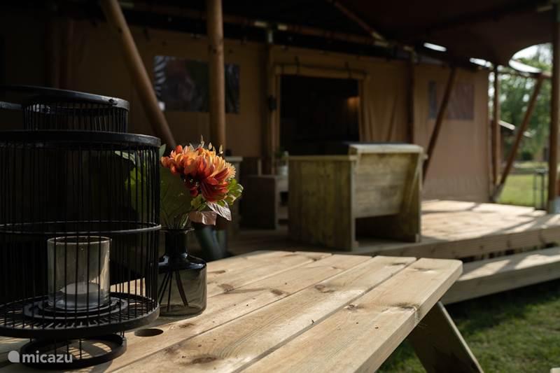 Vakantiehuis Nederland, Overijssel, Markelo Glamping / Safaritent / Yurt Lodgetent Herikerberg