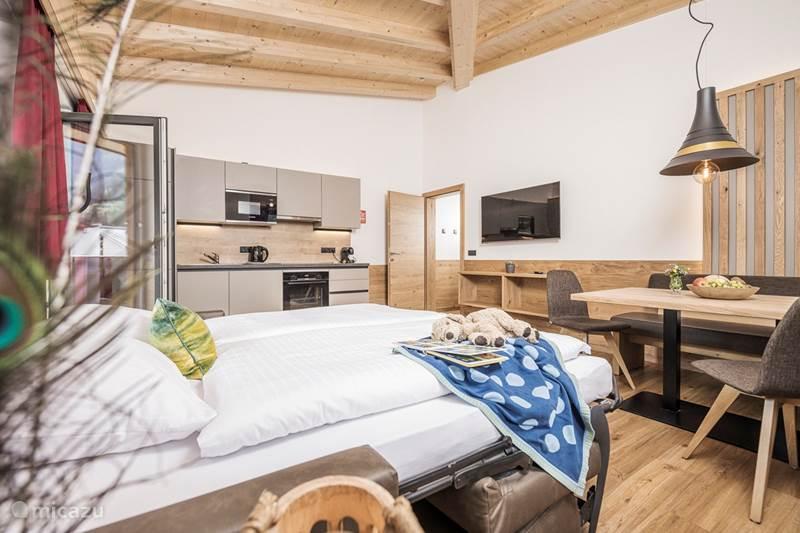 Vacation rental Austria, Tyrol, Mayrhofen Apartment Mo's apartment 2