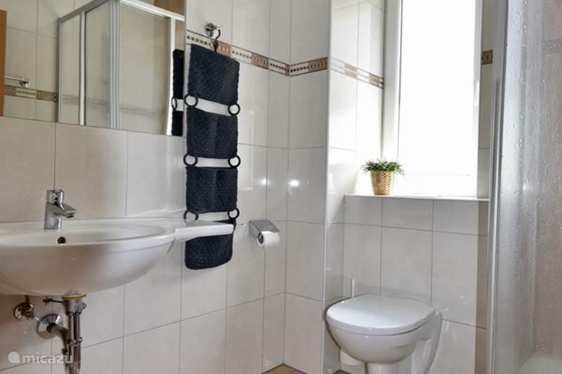 Vacation rental Austria, Salzburgerland, Wagrain Apartment Apartment Yako