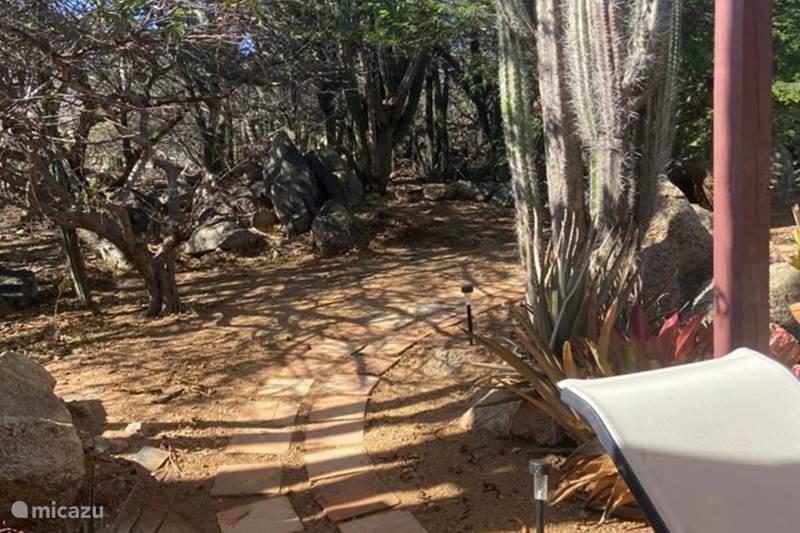 Vacation rental Aruba, Paradera, Paradera Studio Cozy apartment with private jacuzzi