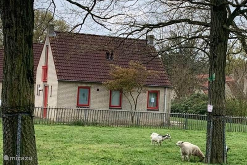 Vakantiehuis Nederland, Gelderland, Ewijk Vakantiehuis Annabelle