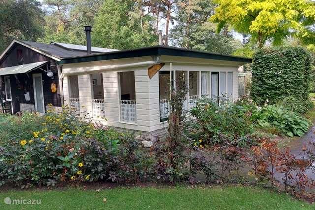 Vakantiehuis Nederland, Overijssel, Bathmen - vakantiehuis 't Hofke'