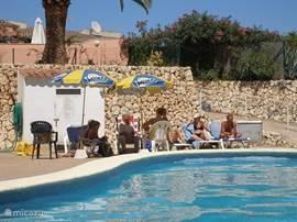 zwembad bij hollandse club